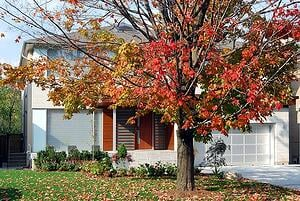 garage storage solutions for fall