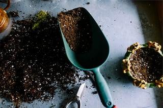organize gardening tools